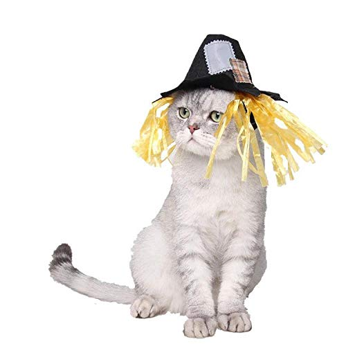 Hunde Vogelscheuche Kostüm - WINNER POP Katze Hund Vogelscheuche Kostüm - Katze Matrose Kostüm Marine Hut Katze Hund Kostüm für Halloween, Weihnachten, Party, 2tlg