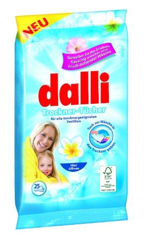 Las hojas secado secadora Dalli disfrutan experiencia