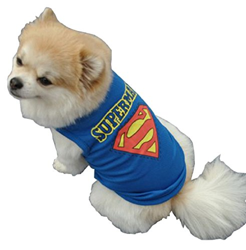 Inception Pro Infinite Kostüm - Verkleidung -Superman - Superheld - Stahl Hund - Hund (L)