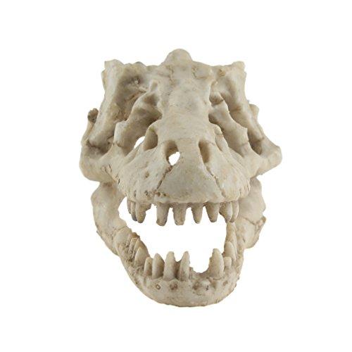 Emours Reptile Hideout Skull terrario acquario Grotta decorazione