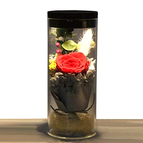 Jiewo Conservado Rosa Real Natural Flor Fresca Hecha a Mano romántica Rosa Botella luz con 4 Colores Regalos para Novia, Mujeres, niñas, Hermanas, día de la Madre, Aniversario, cumpleaños, Boda