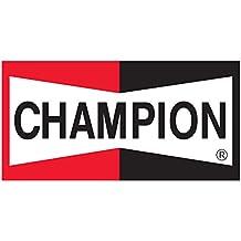 1 x campeón cobre Plus ...