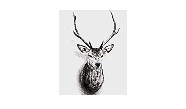DIY Oil Painting Kit for Kids Beginner Frameless Deer 16X20 Inch Shukqueen DIY Paint by Numbers for Adults