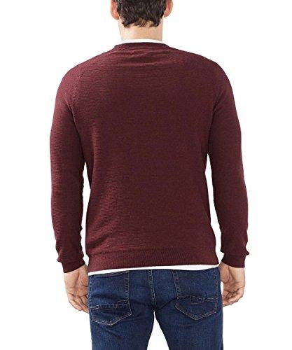 ESPRIT Collection Herren Pullover Rot (GARNET RED 620)