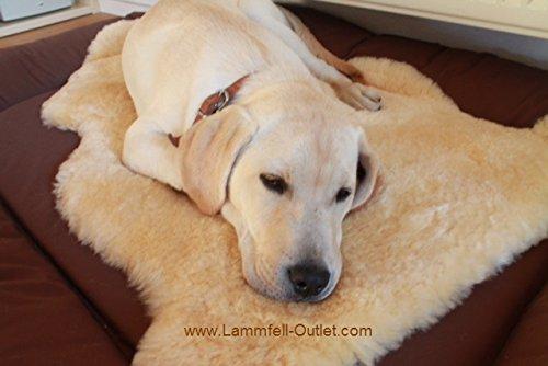 Merino-Lammfell ca. 60cm. Ganz zart und dicht. Für einen warmen, weichen und kuscheligen Schlafplatz. Echtes Leder. Geruchsarm. 30° waschbar mit Shampoo. Oeko-Tex 100. Deutsches Qualitätsprodukt. Ideal auch für liebe Hunde und Katzen.