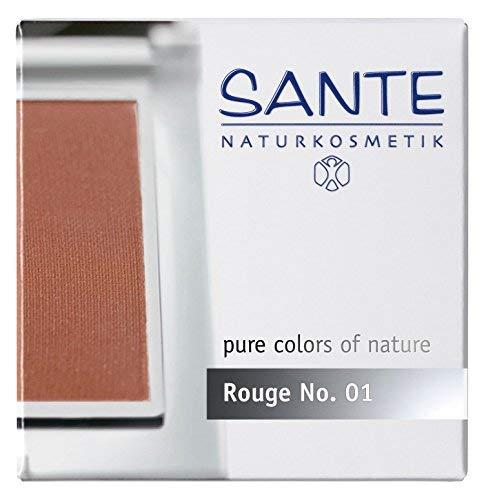 Sante Rouge Silky Terra 01, 6.5 Gram by Sante