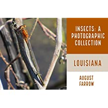 Insects & Arachnids: A Photographic Collection: Louisiana: United States (English Edition)