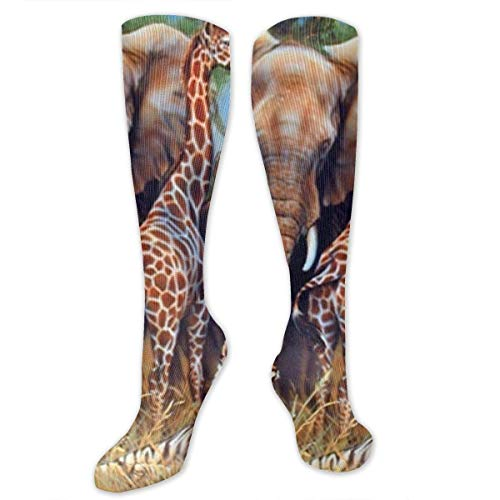 ocken Giraffe Rhino Elephant and Tiger Compression Socks,Knee High Socks,Funny Socks for Women Men - Best Medical,Sports,Running, Nurses,Maternity,Pregnancy,Travel & Flight Socks ()