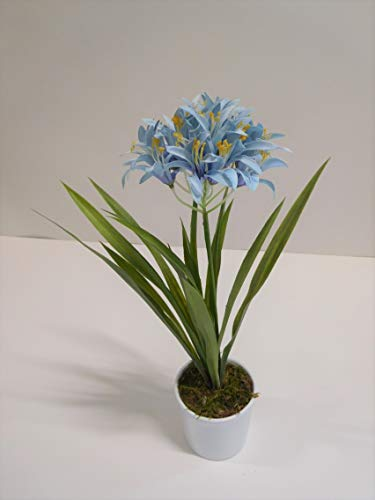 Ziegler Agapantus Schmucklilie Dekopflanze Kunstpflanze H 42 cm hellblau getopft 56448-06 F73