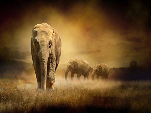 Lais Puzzle Elefantes en la Puesta de Sol 2000 Piezas