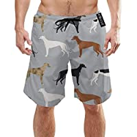 ZKHTO Greyhounds Cute Dog Rescue Dog Best Dogs Cute Dog DesignMens Summer Swim Trunks 3D Graphic Quick Dry Funny Beach Board Shorts with Mesh Lining(M)