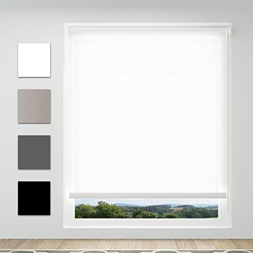 Achollo Estor Enrollable Translúcido 60 x 170 cm Blanco Fijación sin Taladrar para Ventanas y Puertas