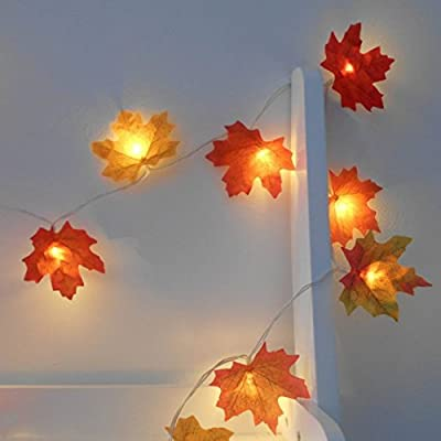 2m 20 LED Mixed Autumn Leaves Fairy Lights - Other Sizes Available - String Lights / Lit Garland - Battery Operated - Wedding Decorations - Fairy Lights Bedroom - Fairy Lights Warm White - Leaf Fairy Lights - Prime Delivery