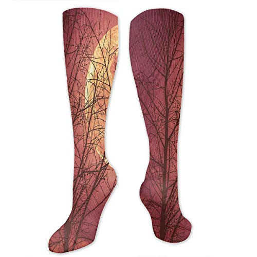 VVIANS Personalized Compression Socks,Night Sky Super Moon Behind Silhouette Of Dead Tree Serenity Nature,Best Medical,for Running,Hiking,Varicose Veins,Circulation & Recovery -