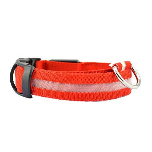 Haustier Nylon Solide LED Hundehalsband Glow Halskette von Sannysis (S, rot) (Knoten-knopf Tuch)