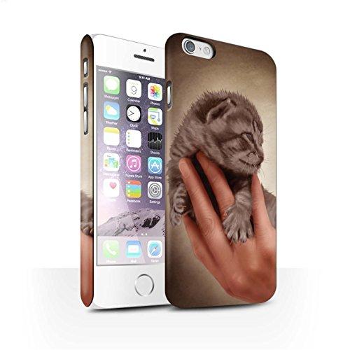 Officiel Elena Dudina Coque / Clipser Matte Etui pour Apple iPhone 6 / Petit Panda/Bambou Design / Les Animaux Collection Minou/Voir