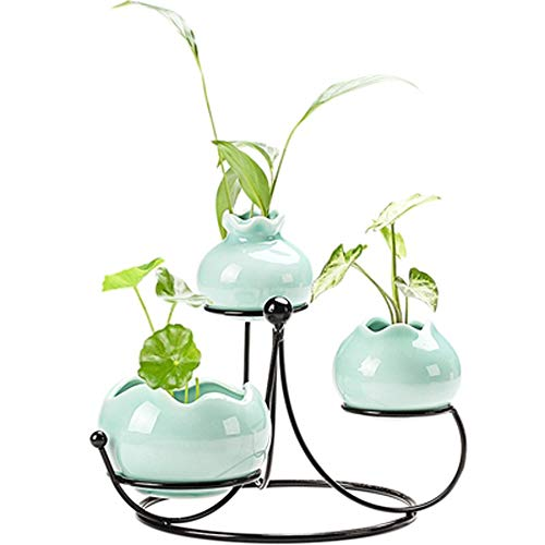 XOSHX Moderne Hydroponische Pflanze Schmiedeeisen Kleine Vase Seladon Blume Eingesetzte Keramik Wasser Grüne Blume Blume Kreative Dekoration Ornamente