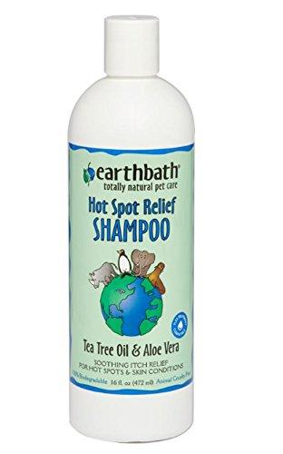Bild: earthbath Shampoo Tea Tree Schutz