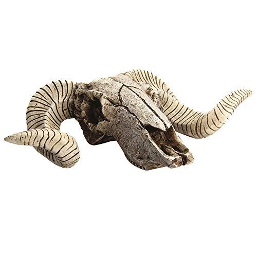 Almabner Calavera de Cabra decoración 3D Pared decoración...