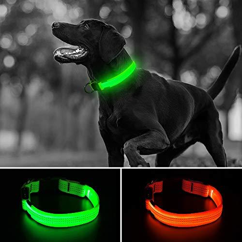 Illumifun LED-Hundehalsband, wiederaufladbares Nylon-Gurtband, verstellbar, leuchtendes Hundehalsband, reflektierendes Licht, Small Collar [15-18.9inch/38-48cm], Green3 -