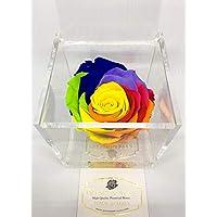 Cubo Rosa stabilizzata multicolor rainbow 8cm, profumata è una vera e propria Rosa che dura anche piu di 5 anni