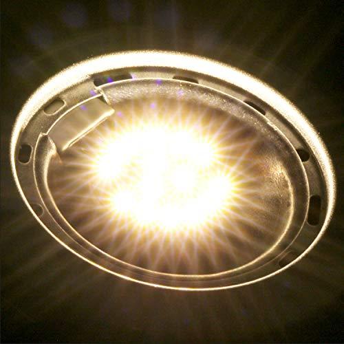 Kohree Ampoule G4 LED 3000K Blanc Chaud 2W 12V 220lm Remplacement d'Ampoule Halogène pour Camping-car RV Bateau Caravane Lot de 4