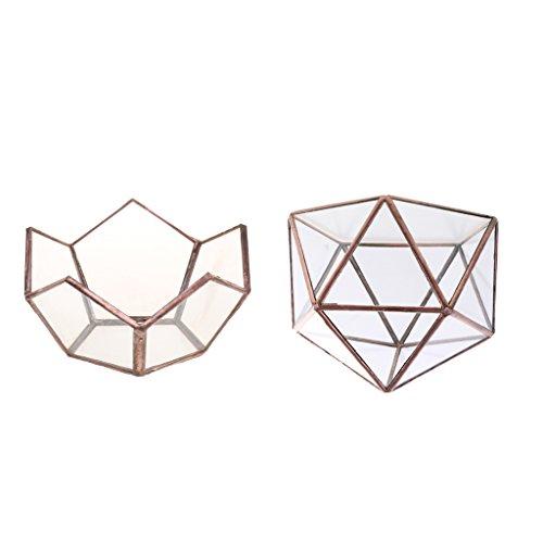 Sharplace 2ST Set Klarglas Geometrische Terrarium Box Plant Pflanzer Tisch Dekor Gefallen