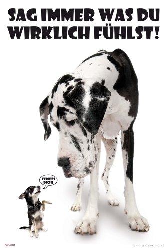 Hunde - Sag Immer was du fühlst - Tier-Poster schwarz-Weiss Foto - Grösse cm + 2 St Posterleisten Kunststoff 62 cm transparent