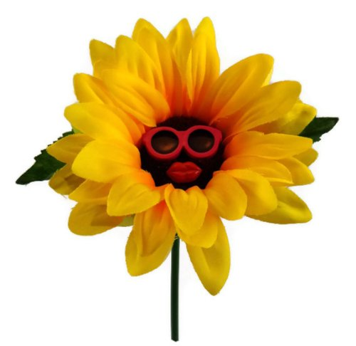 vw-beetle-flower-sunflower-with-pink-glasses