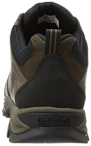 Timberland Trailwind 2 0 Ftp Mt Maddsen Low, Multisports outdoor homme Marron (Brown)