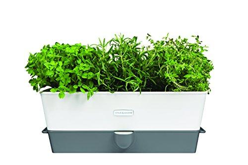 cole-mason-conservante-di-erba-in-vaso-con-scompartimenti-colore-bianco-grigio-altro-bianco-grigio-1