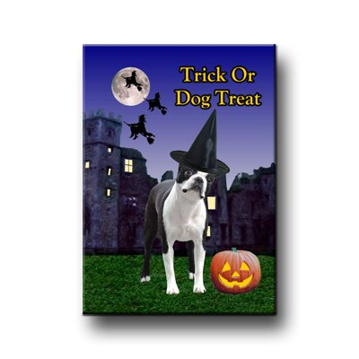 Boston Terrier Halloween Fridge Magnet (Boston Halloween Terrier)