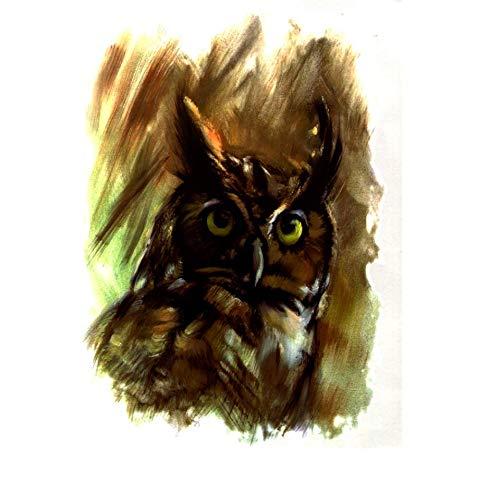 ruofengpuzi at Night Owl Tattoo wasserdichte Aufkleber-Temporäre Tätowierung Sleeves Tätowieren Tätowierung-Körper-Kunst-Aufkleber Applikationen