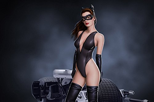 man The Dark Knight Catwoman Hot Anne Hathaway Poster 24x36 inches a ()