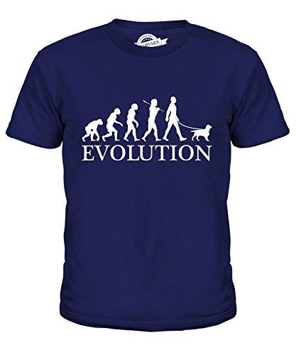 Candymix Welsh Springer Spaniel Evolution Of Man Unisex Kids T Shirt Boys/Girls/Toddler/Children T-Shirt