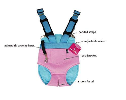 Strimm Tragbar Haustier Welpen Hundetragebeutel Rucksäcke Front Gepäckträger Umhängetasche für Kleine Hund bis 5 kg