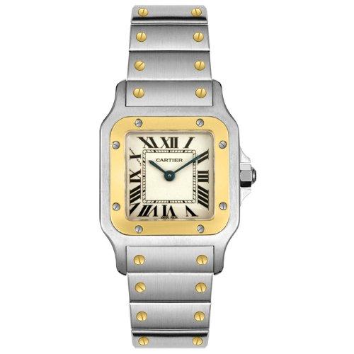 Cartier W20012C4