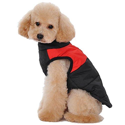 Treat Me Nylon Fabric Dog Winter Coat Waterproof Zipper Pet Coat for Puppy,Outdoor Skiing,Easy to Clean - Coat Dog Treats