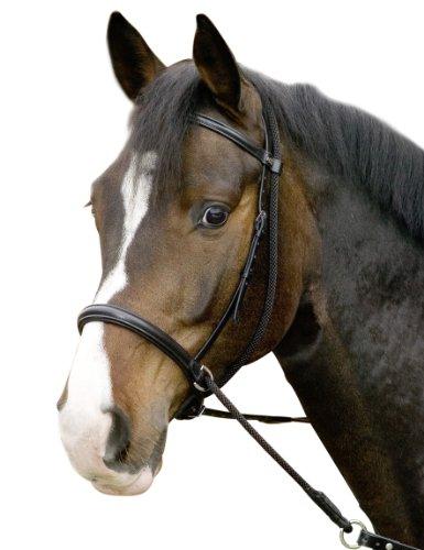 USG Gebisslose Trense \'\'Connection\'\', schwarz, Pony