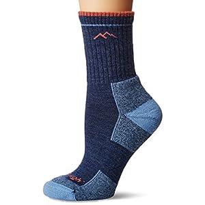 41WqfKluXzL. SS300  - Darn Tough Vermont Women's Merino Wool Micro Crew Cushion Socks