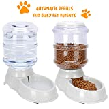 Best Automatic Cat Feeders - Made king Intelligent Automatic Pet Feeders, Video Feeders Review
