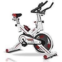 SG Bicicleta de Spinning GK-706 de 24 kg de Disco de inercia Color Blanco
