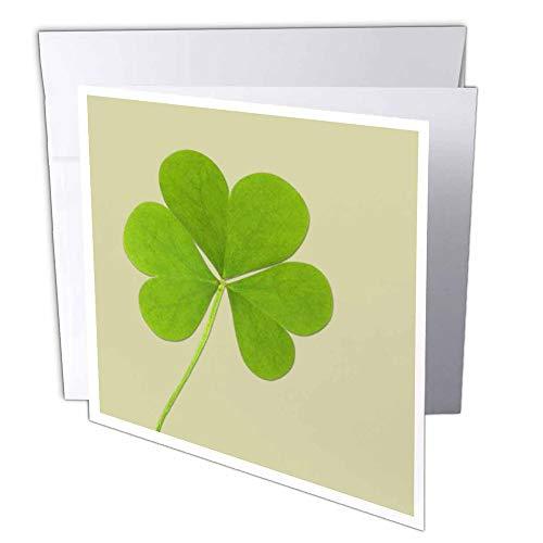 3D Rose GC 39339_ 2grün clover- Irische Kunst-St. Patrick 's Day-Grußkarten, 15,2x 15,2cm Set von 12 (St Patricks Kunst)