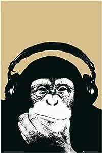 Poster Steez - Affe mit Kopfhörern - Größe 61 x 91,5 cm - Maxiposter
