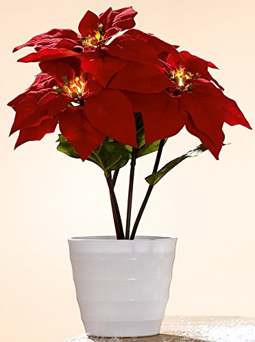 dekojohnson Wunderschöner Weihnachtsstern Dekoblume Kunstblume Plastikblume im Topf mit 5 LED Blüten, rot, 23x23x36 cm