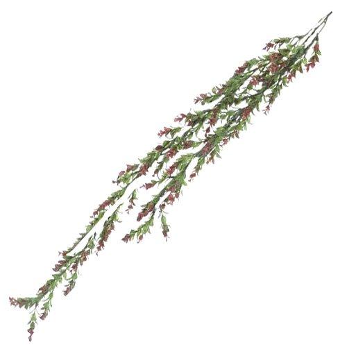 Euro Palms 82503715 herbe ranke 105 cm, vert/rouge