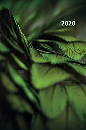 2020: Green leaves Stylish Planner Calendar Organizer Daily Weekly Monthly Student for researching macro photography lens