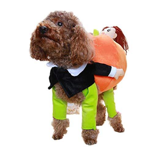 Mann Kostüm Candy - Haustier Hund Katze Halloween Kostüme, Kleiner Mann, Der Kürbisart Hält Haustier Kleidung Lustige Welpen Kostüm Hund Katze,BackLength35cm