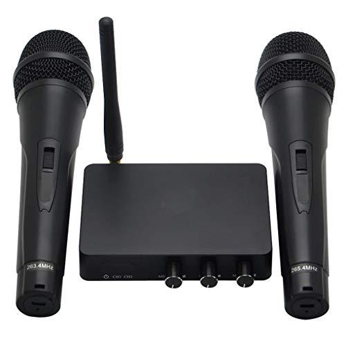 Fornateu Wireless-Mikrofonsystem Set 2 Wiederaufladbare Hand Mics Karaoke-Mikrofon AusgangsKTV Kirche Hochzeit Konferenz (Drahtlose Mikrofone Für Kirchen)