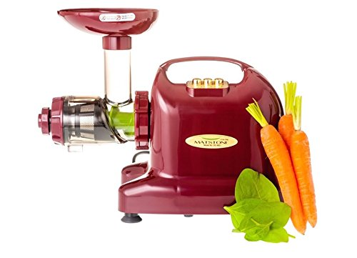 Matstone 6 in 1 Juicer in Burgundy
